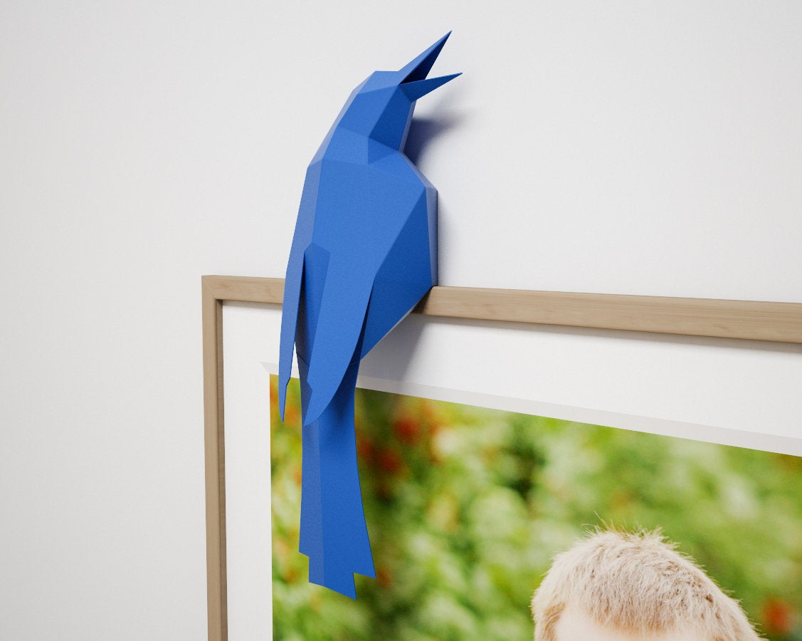 Bird on a Frame
